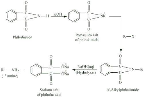 Gabriel phthalimide reaction Write short notes on